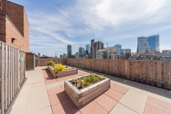 Raised gardens and rooftop terrace looking out to cityscape, blue sky